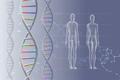 素材ナンバー 2359346 : 「DNA 遺伝子」